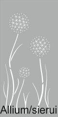 Allium of Sieruit, de gestileerde bloem