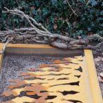Grafmonument corten staal, thema boom